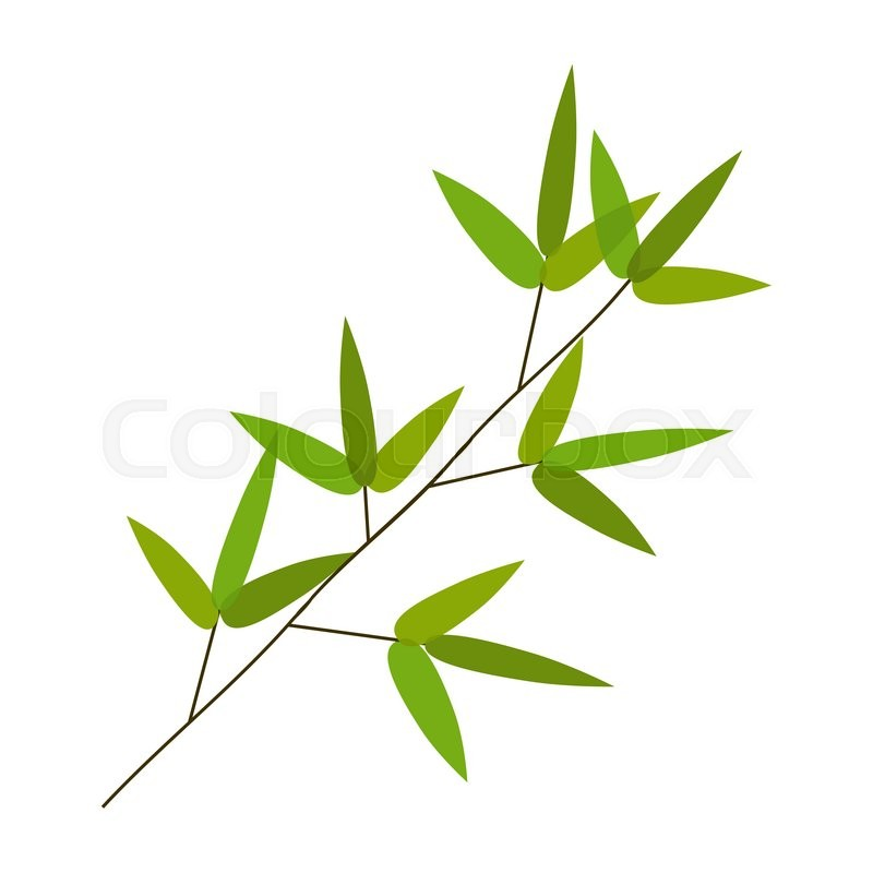 800x800 Colourful Bamboo Leaves. Vector Illustration. Eps10 Stock Vector