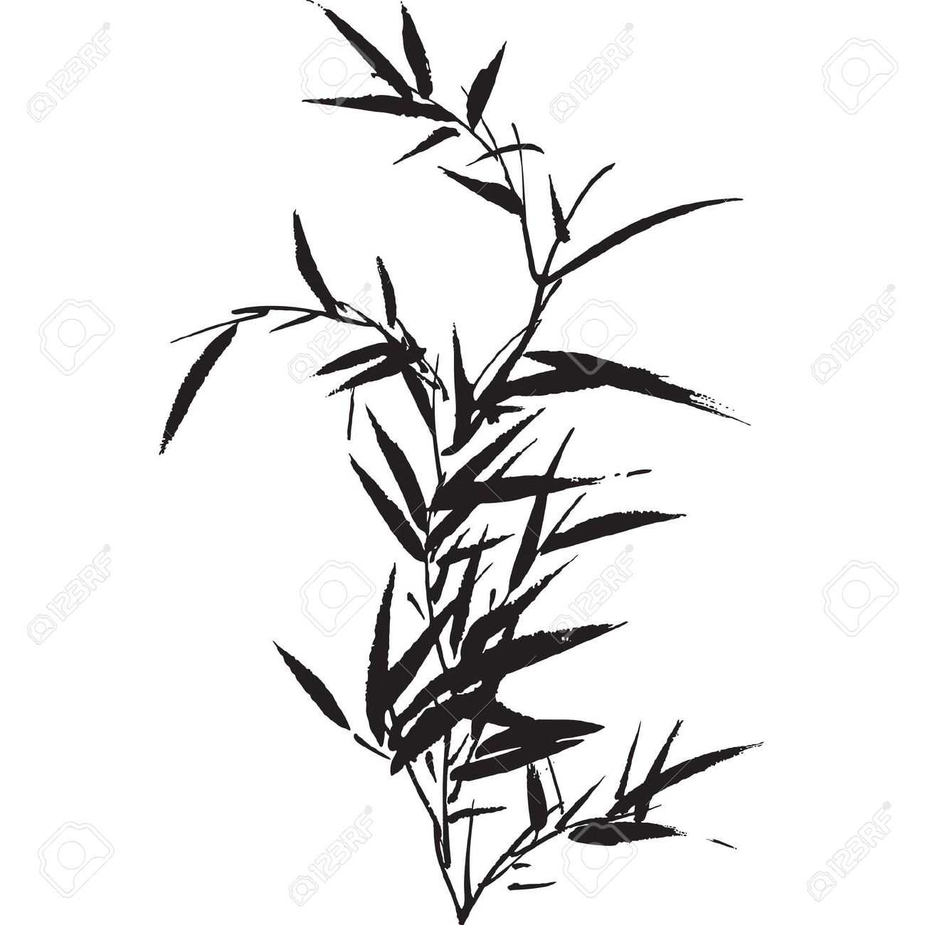 1300x1300 Drawn Bamboo Bamboo Leaf Free Collection Download And Share
