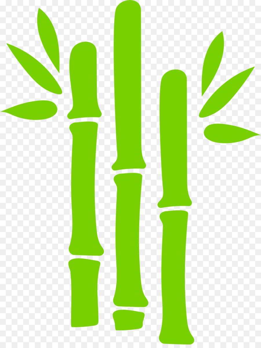 900x1200 Green Bamboo Euclidean Vector