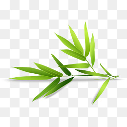 260x260 Hand Painted Bamboo Png Images Vectors And Psd Files Free