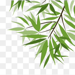 260x261 Bamboo Leaf Vector Png, Vectors, Psd, And Clipart For Free