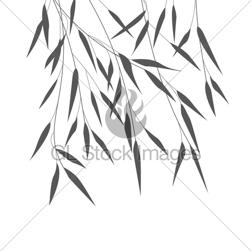500x500 Vector Bamboo Leaves Gl Stock Images