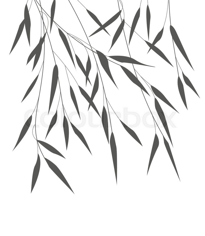 694x800 Vector Illustration Bamboo Leaves. Background With Black Leaves