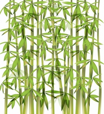 334x368 Bamboo Free Vector Download (226 Free Vector) For Commercial Use