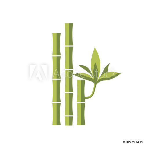 500x500 Bamboo Vector Flat Illustration. Leaf Green Design, Japanese And
