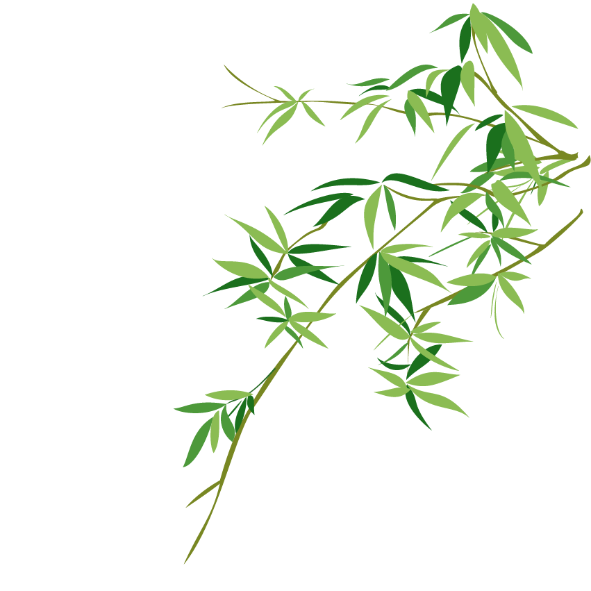 851x851 Collection Of Free Bamboo Vector Chinese. Download On Ubisafe