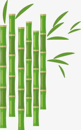 262x419 Vector Bamboo, Bamboo Vector, Vector, Hand Painted Png And Vector
