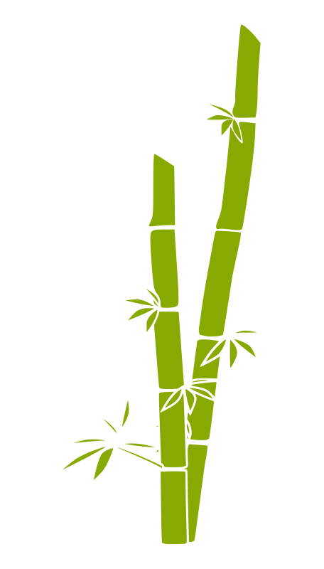 456x800 Free Vector Bamboo Ok Pare Graphics