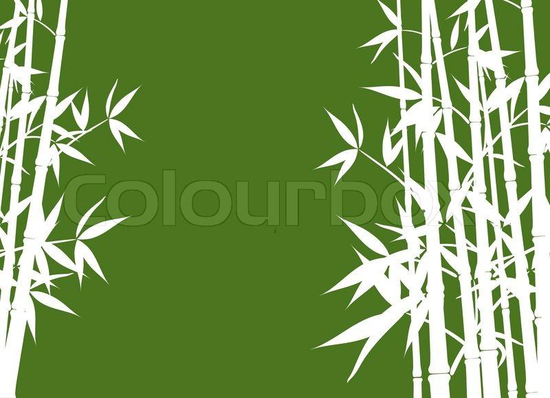 800x579 Bamboo, Vector Illustration Stock Vector Colourbox
