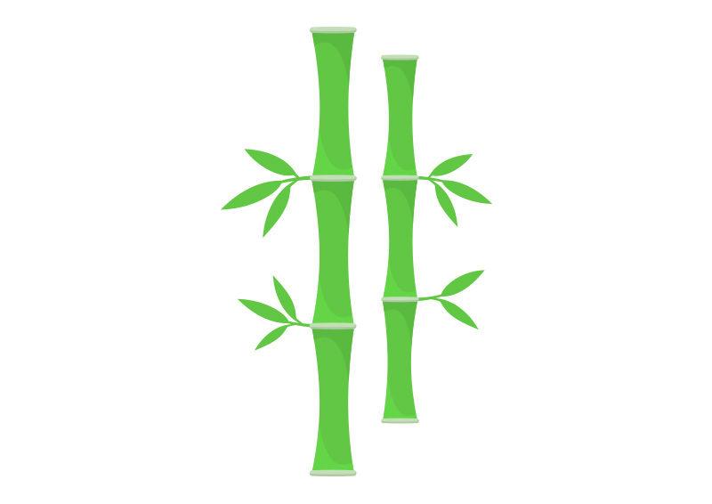800x566 Bamboo Vector Illustration
