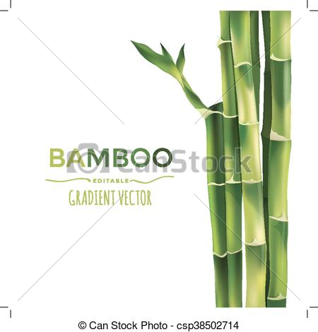 450x470 Bamboo Vector Illustration. Bamboo Vector Illustration Isolated On