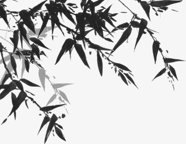 650x502 Ink Bamboo Vector, Bamboo Leaves, Black, Ink Png And Vector For