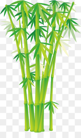 260x440 Bamboo Vector Png Amp Bamboo Vector Transparent Clipart Free