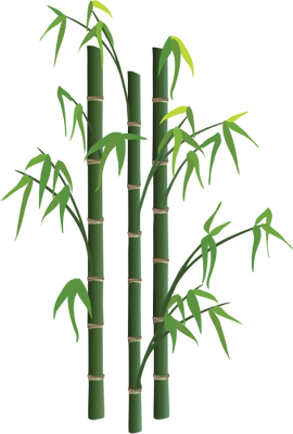 270x400 Bamboo Tree Png