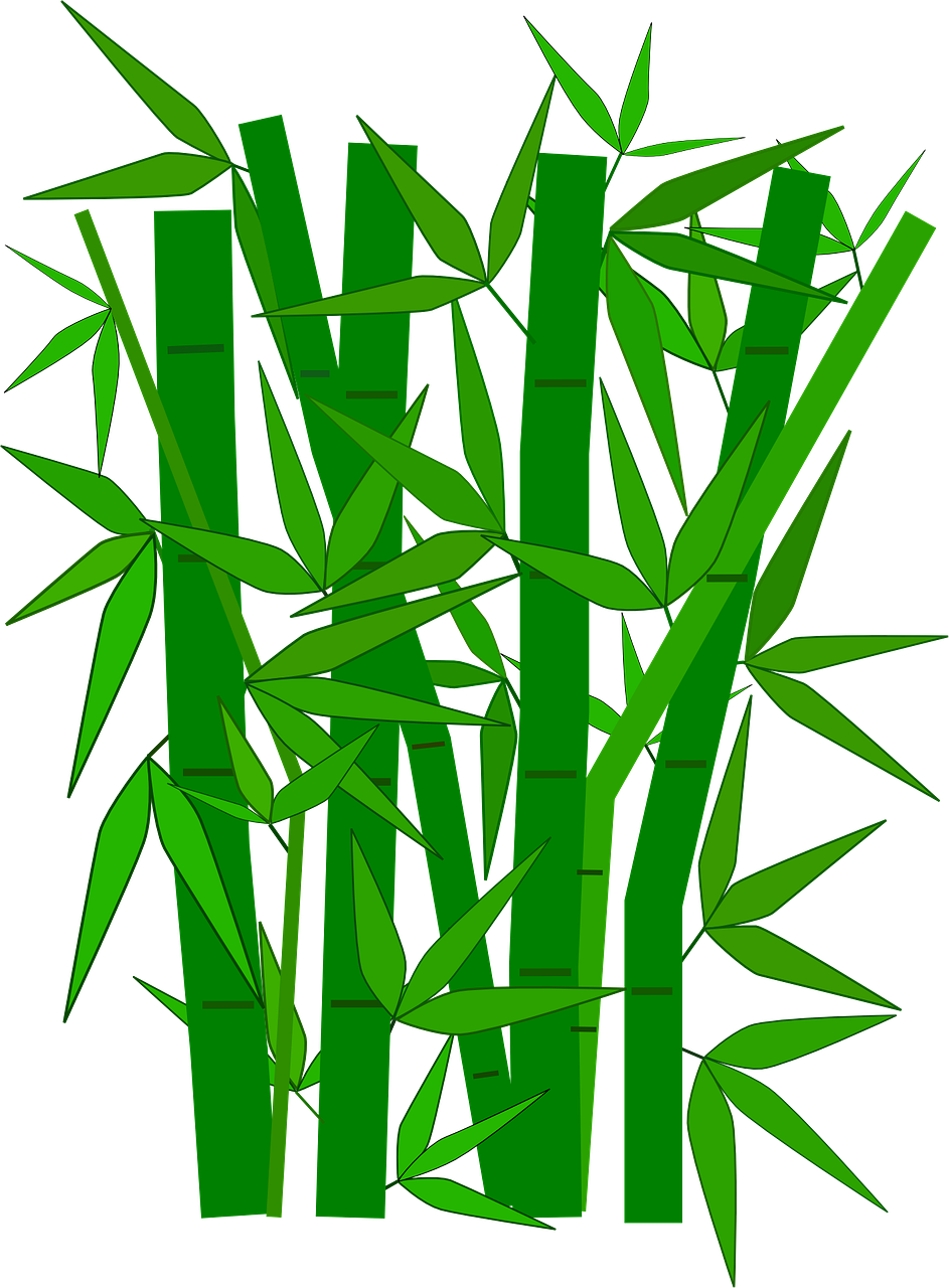 943x1280 Collection Of Free Bamboo Vector Japan. Download On Ubisafe