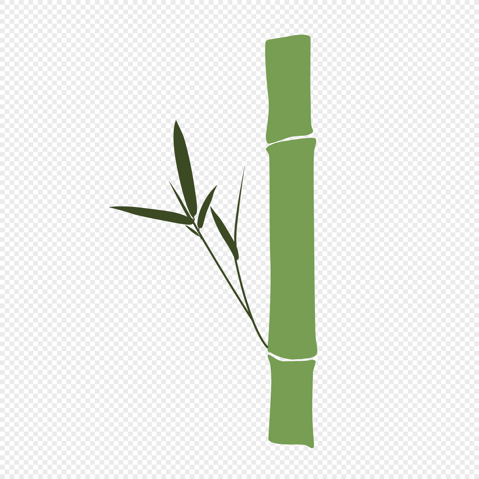 2020x2020 Cyan Bamboo Vector Material Png Image Picture Free Download