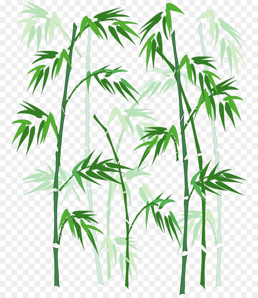900x1040 Download Bamboo Vector Hand Painted Bamboo
