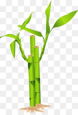 260x380 Download Bambu Vector Png Clipart Clip Art