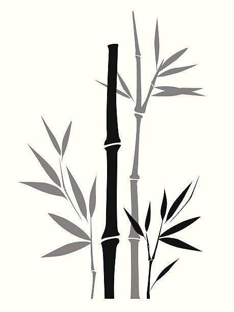 459x612 Drawn Bamboo Vector Free Collection Download And Share Drawn