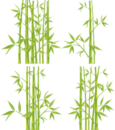 230x260 Green Bamboo Vector Graphics To Download