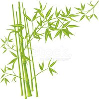 199x200 Bamboo, Vector (Mesh) Stock Vectors