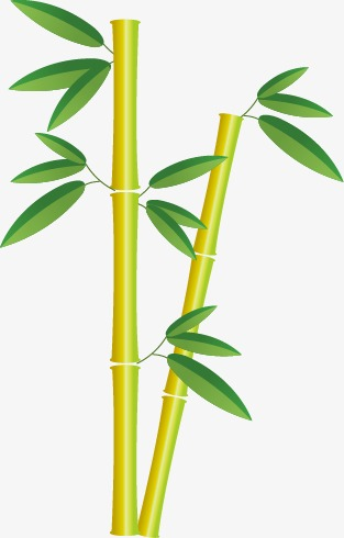 313x490 Bamboo Bamboo, Bamboo Vector, Bamboo, Bamboo Leaves Png And Vector