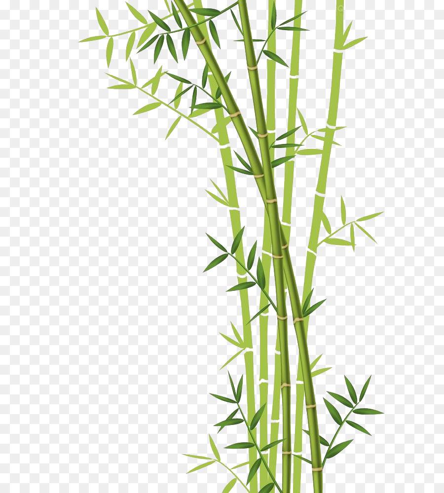 900x1000 Bamboo Forest Euclidean Vector Stock Photography