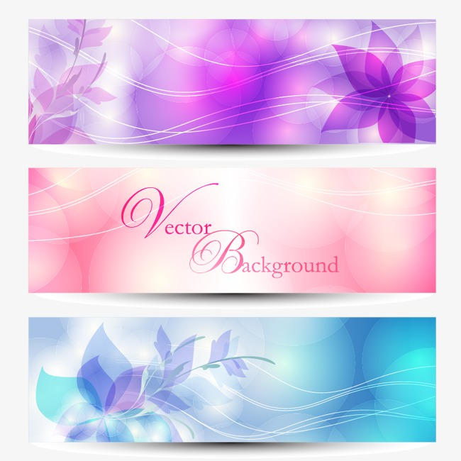 650x650 Banner Background, Vector Floral Banner, Vector Flower Png And