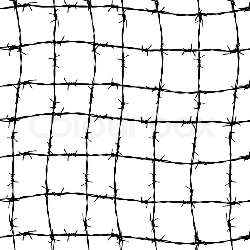 800x800 Fence From Barbed Wires Isolated On White Background Stock