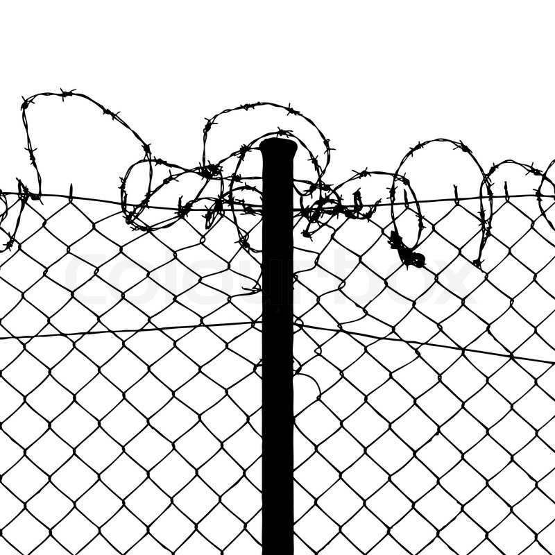 800x800 Vector Of Wired Fence With Barbed Wires Stock Vector Colourbox
