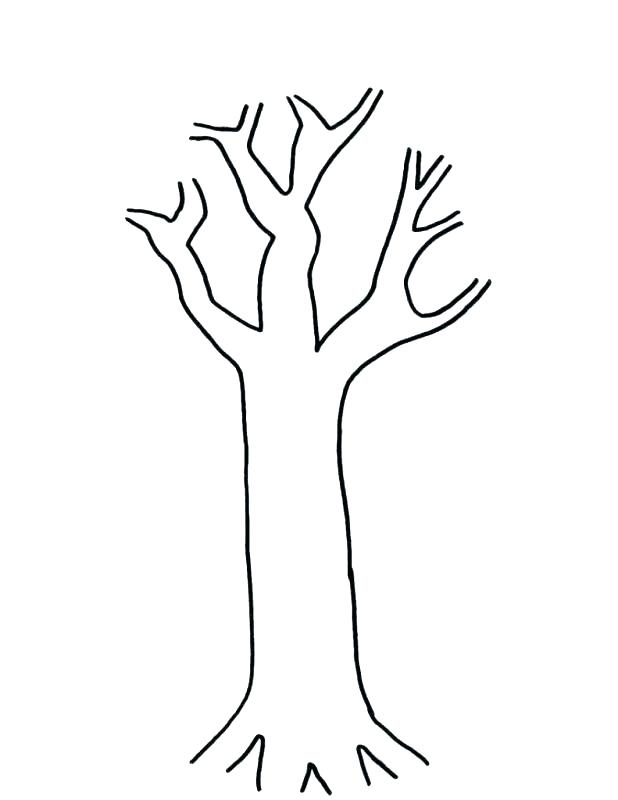 618x800 Outline Of A Tree With Branches Palm Tree Outline Bare Tree Vector