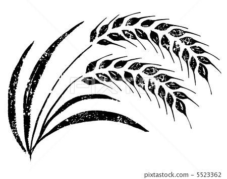 450x356 Wheat, Barley, Vector