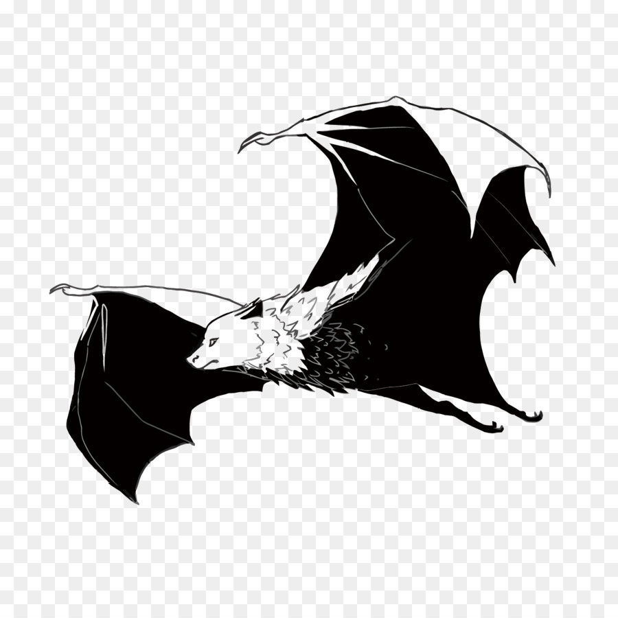 900x900 Bat