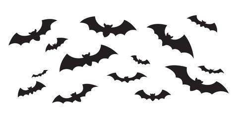 480x240 Search Photos Bat Vector