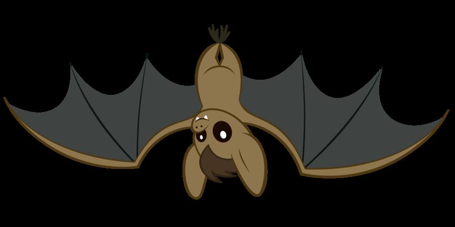 900x450 Bat