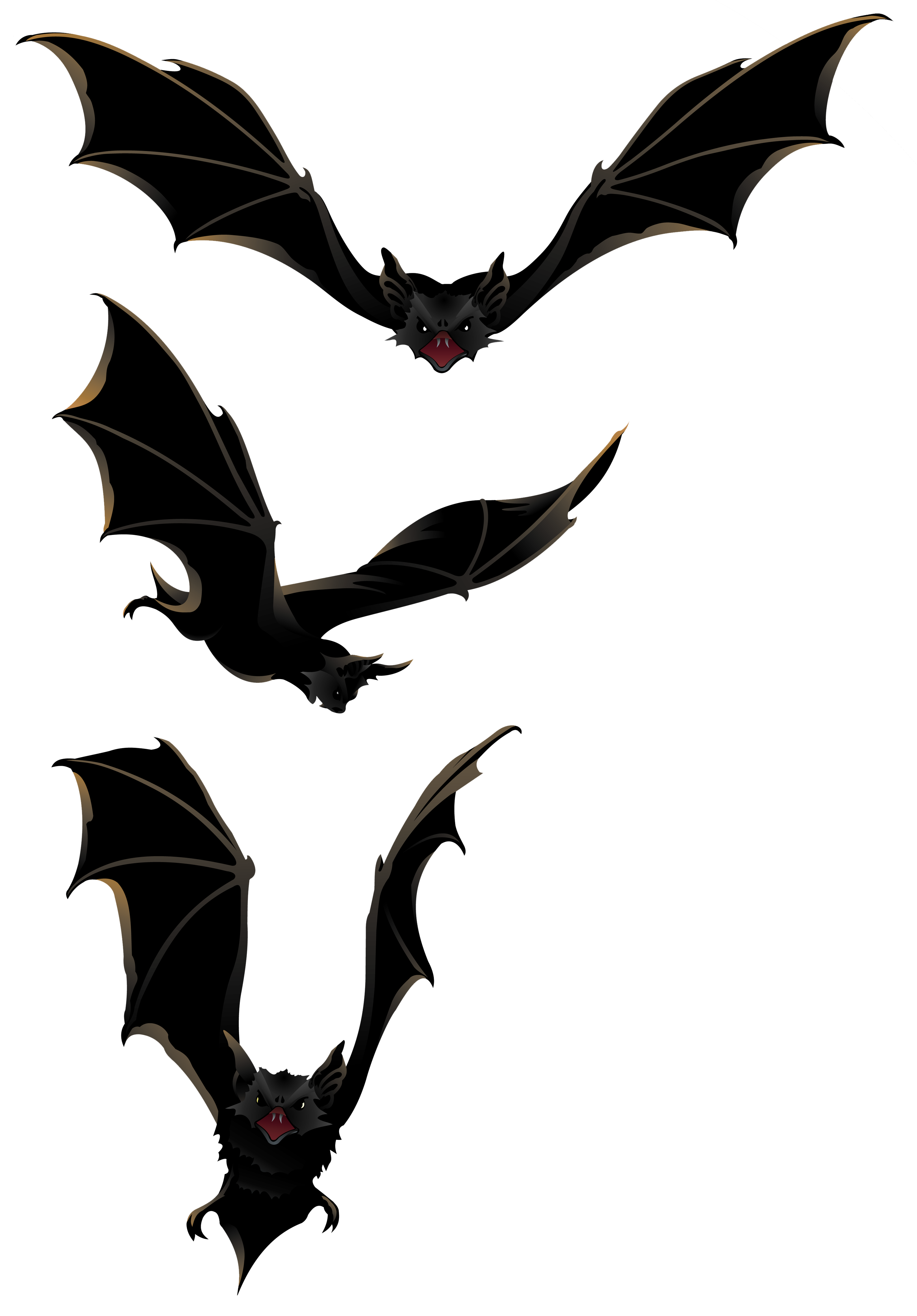 2946x4229 Collection Of Free Bats Vector Bat Animal. Download On Ubisafe