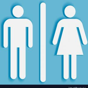 300x300 Washroom With Urinals And Closet Basin For Men Vector Illustration