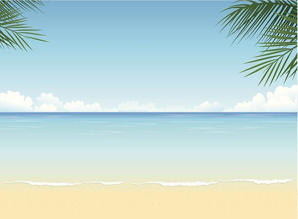 612x450 Tropical Beach Vector Art Illustration Animals In 2018