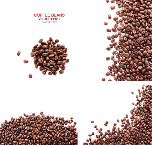 485x463 Coffee Beans With White Background Vector Free Vector In