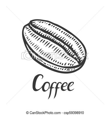 450x470 Vintage Coffee Bean Engraving Vector Illustration.