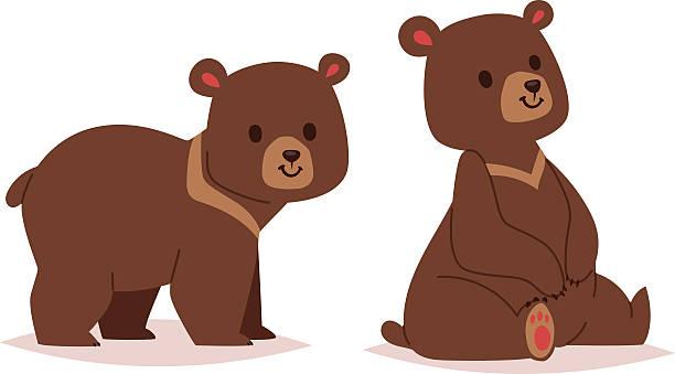 Bear Cub Vector