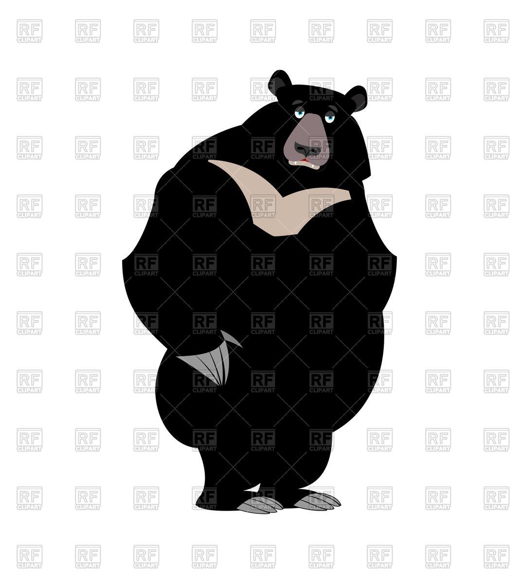 1067x1200 Cartoon Black Himalayan Bear Vector Image Vector Artwork Of