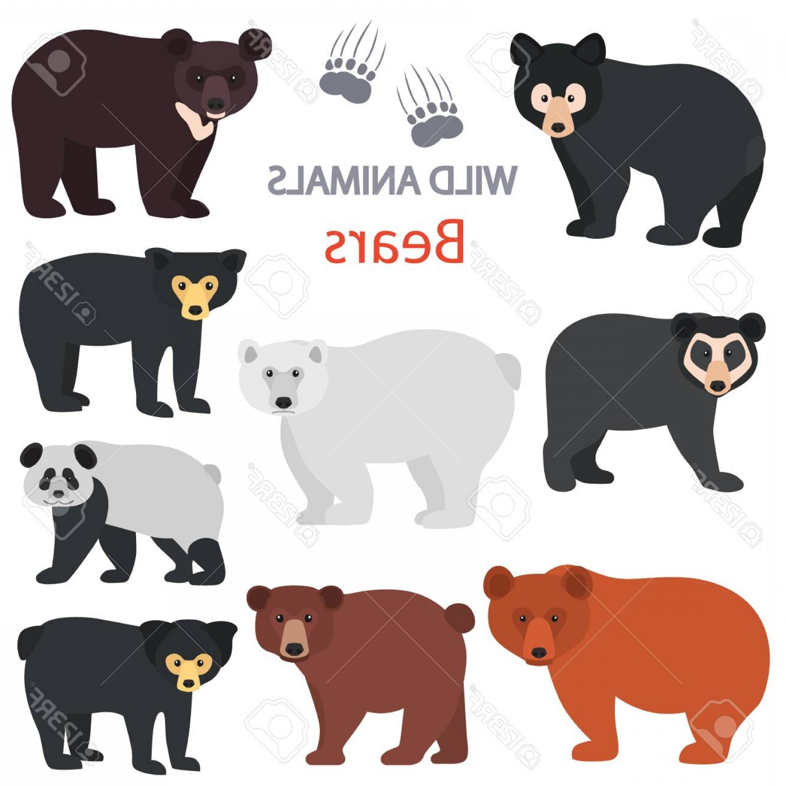 1560x1560 Da Chicago Bears Vector Art Arenawp