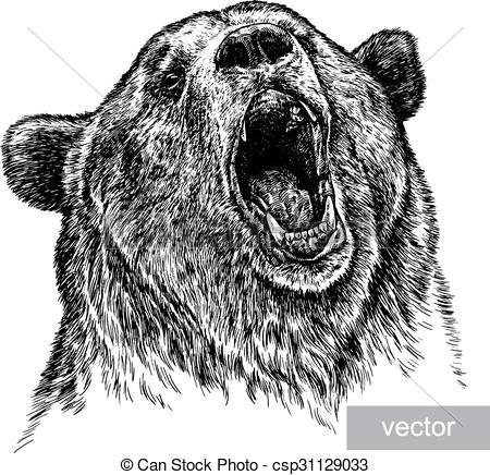 450x436 Engrave Bear Illustration. Engrave Isolated Vector Bear... Vectors