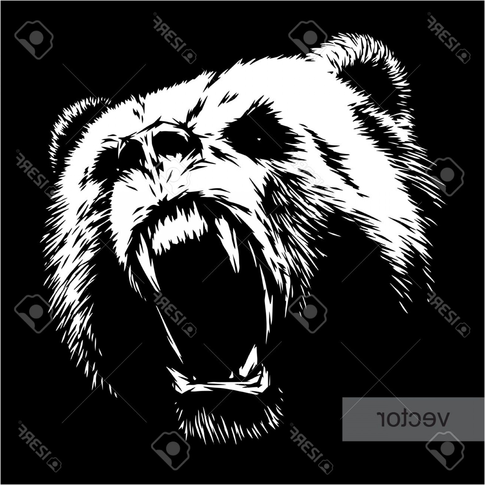1560x1560 Photostock Vector Engrave Isolated Bear Vector Illustration Sketch