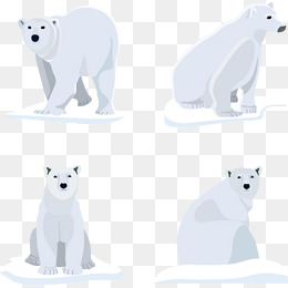260x260 Polar Bear Vector Png Images Vectors And Psd Files Free