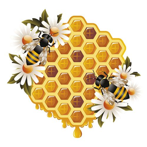 500x500 Elements Of Honey And Bees Vector Set 01