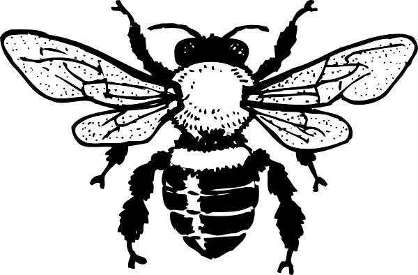 600x394 Honey Bee Clip Art Free Vector In Open Office Drawing Svg ( .svg