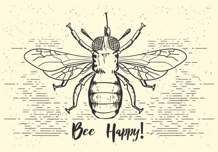 700x490 Bee Free Vector Art