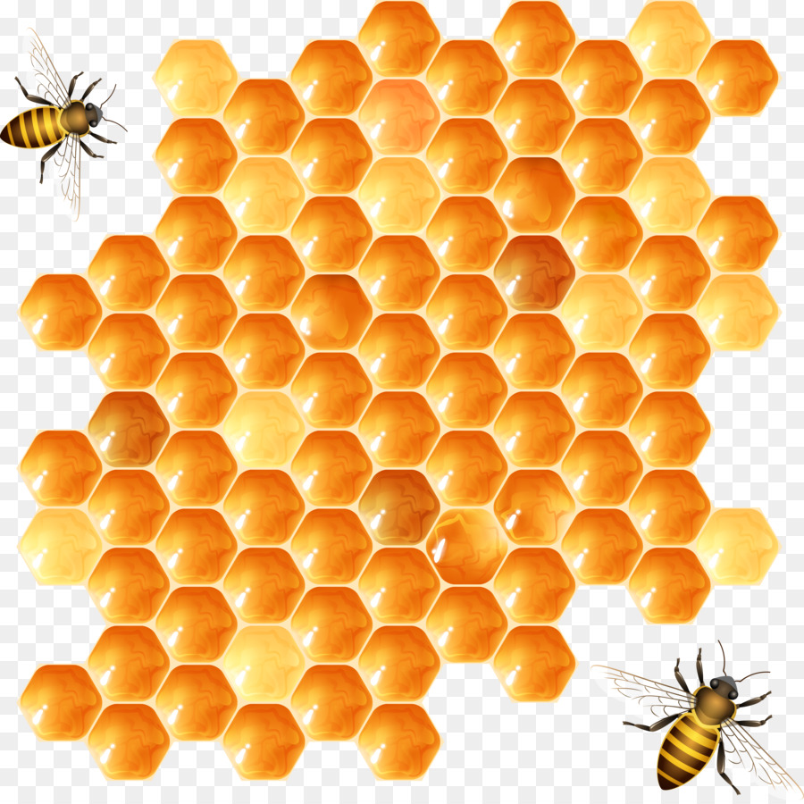 Beehive Vector At GetDrawings